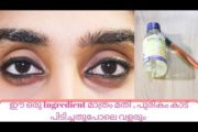 How To Grow Eyebrows Thicker And Faster 💯 Natural Remedy||Darker Eyebrows||Abhina Anil||Malayalam