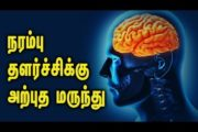 Natural remedy for Neuro problem – Tamil Health Tips