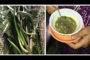 কচু জালুকীয়া, তেজৰ মহৌষধ | Delicious Taro Pepper Dish | Magical & Natural Remedy of New Mom