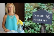 Natural Remedy for Poison Ivy – Immediate Itch Relief!