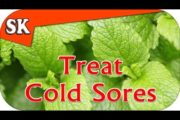 NATURAL COLD SORE REMEDY – Avoid Pharmaceuticals